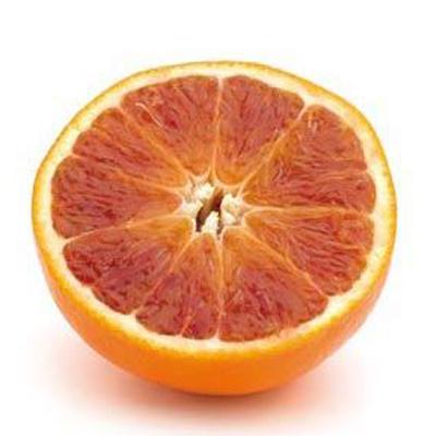 Arancia Rosaria: produzione arance rosse di Sicilia