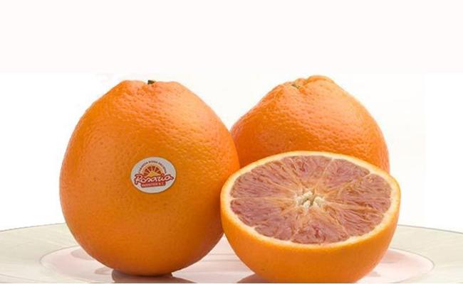 Produzione arance - Vendita arance rosse