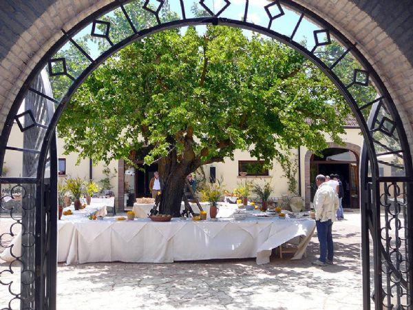 Eventi al Casale di Emma - organizzazione eventi in sicilia - cortile del casale di emma